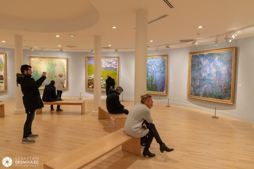 Monet au musée Marmotan - Photo : © Sebastien Desnoulez Photographe