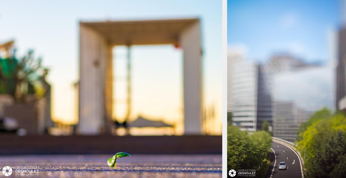<strong>Photographe d'architecture à Paris<span><br /><small><figcaption>Architecture - Une pousse verte sur le parvis de la Grande Arche de la Défense et une Mercedes sur le boulevard circulaire, côté Puteaux - photos : Sebastien Desnoulez</figcaption><small><br /><b>voir en plein écran</b></span></strong><i>&rarr;</i>