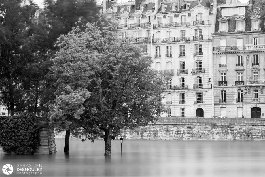 <strong>La Seine à Paris<span><br /><small><figcaption>Crue de la Seine à Paris, juin 2016 - Photo : © Sebastien Desnoulez</figcaption><small><br /><b>voir en plein écran</b></span></strong><i>&rarr;</i>
