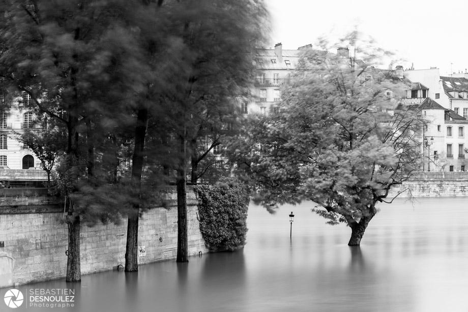 <strong>La Seine à Paris<span><br /><small><figcaption>Quai de l ile Saint Louis inondé, juin 2016 - Photo : © Sebastien Desnoulez</figcaption><small><br /><b>voir en plein écran</b></span></strong><i>&rarr;</i>