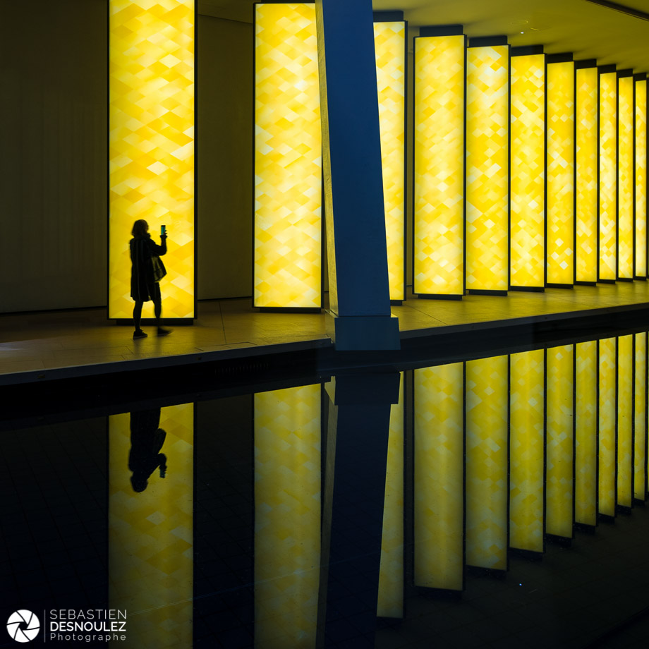 Inside the Horizon – Olafur Eliasson à la Fondation Louis Vuitton