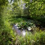 Festival des jardins 2017 de Chaumont-sur-Loire - Photo : © Sebastien Desnoulez photographe